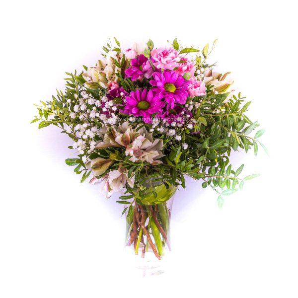 Alsromerie a chrysanthéma
