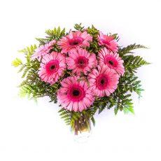Romantické růžové gerbery