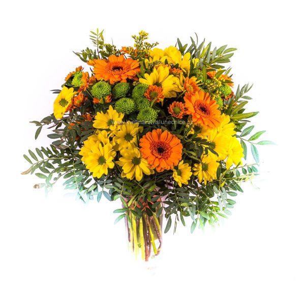 Chrysanthémy a mini gerbery