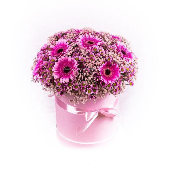 Flower box plný gerber