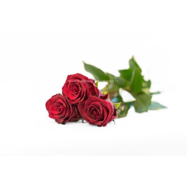 Tři růže svázané saténovou stuhou