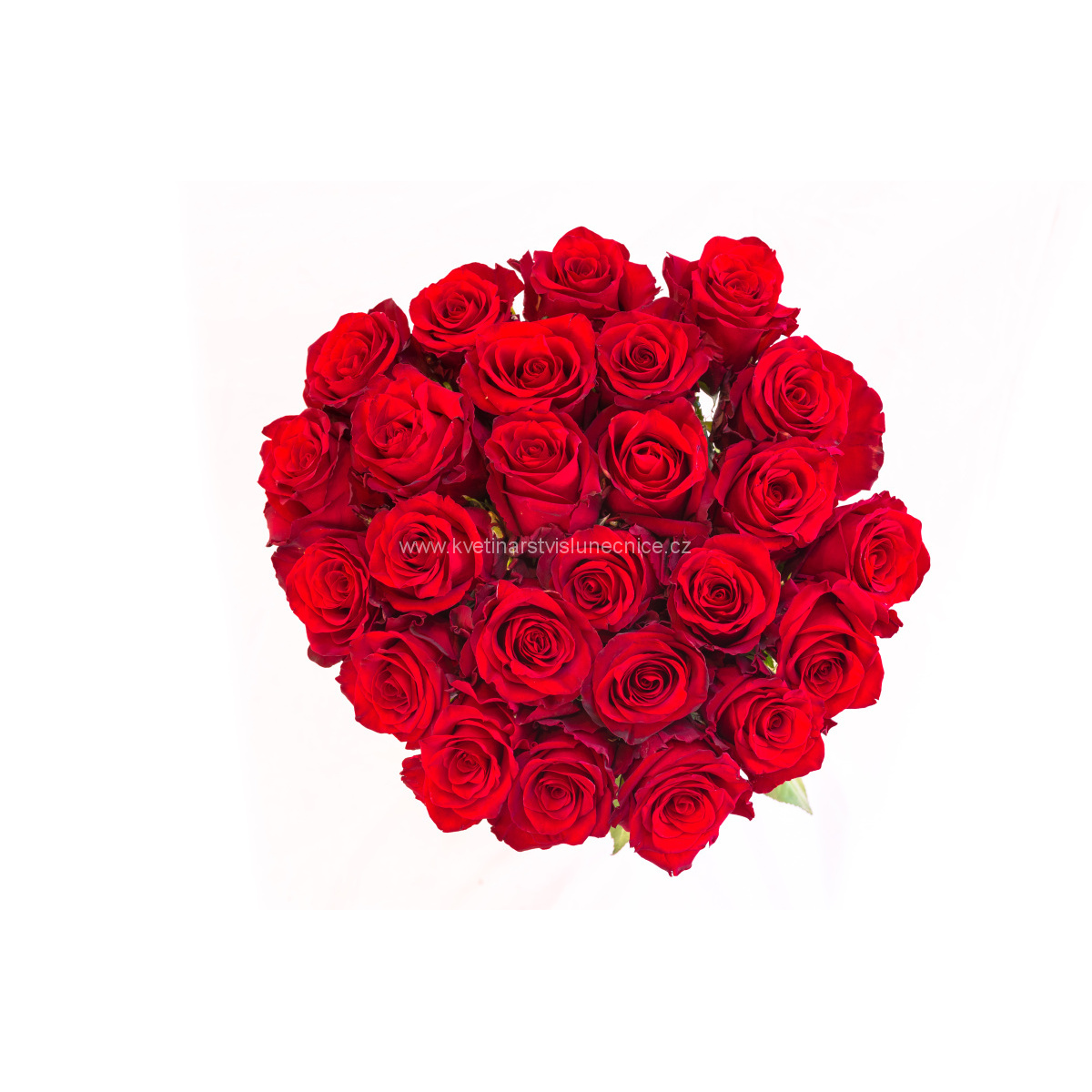 20 růží