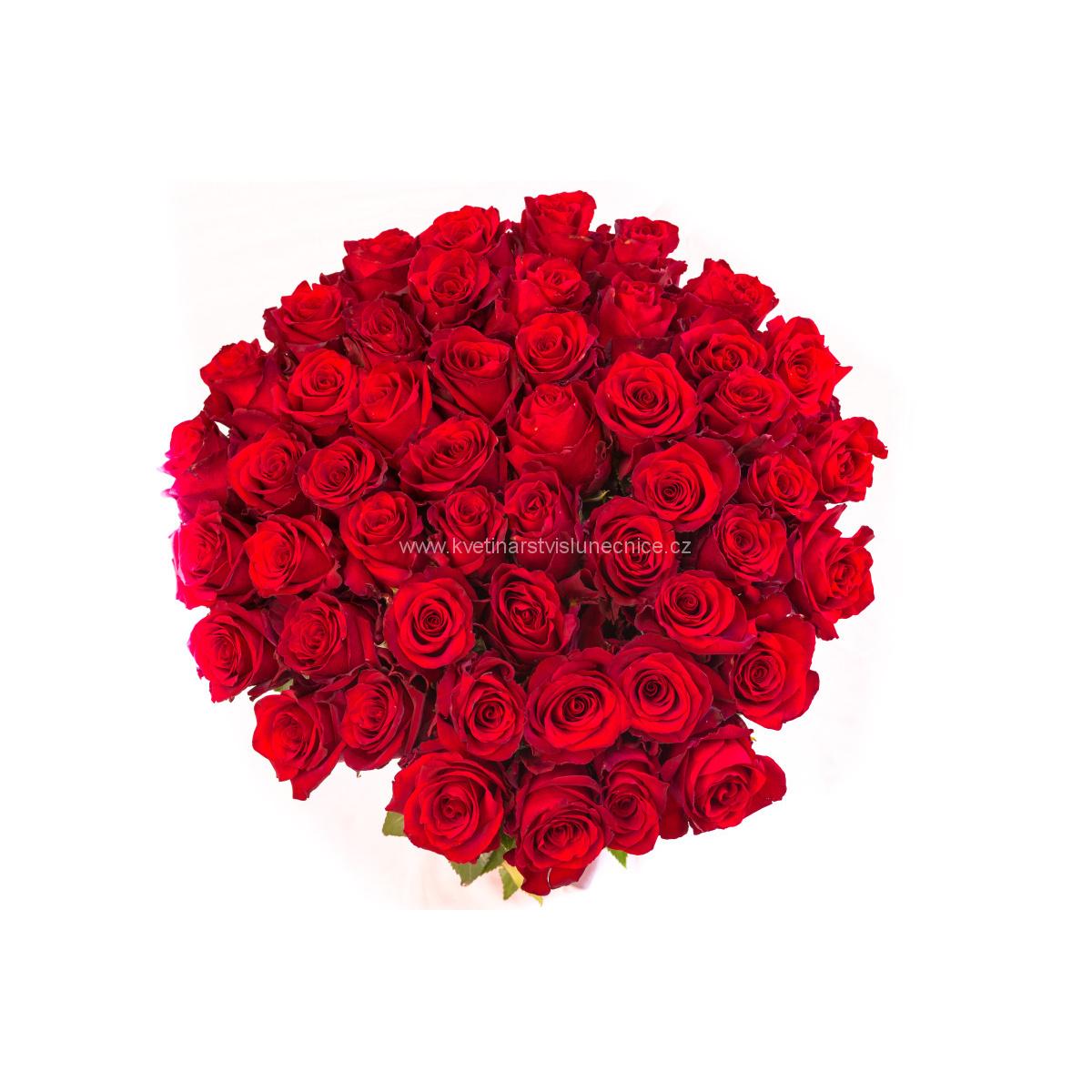 puget 45 50 55 60 65 70 75 80 85 90 95 100 růží